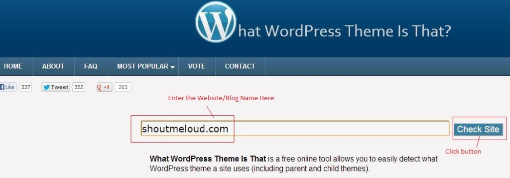 What WordPress Theme is that Website Review
