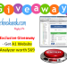 A1 Website analyzer giveaway