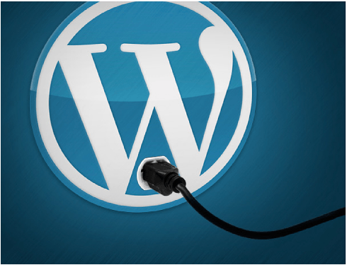 Must Use WP Plugins