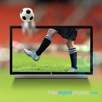Source: http://www.freedigitalphotos.net/images/Television_video_and_g178-Soccer_On_3D_TV_p105455.html
